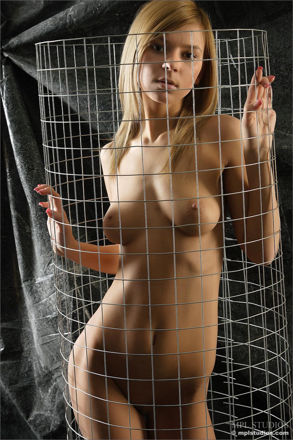 Сучки в клетке 16 фотография